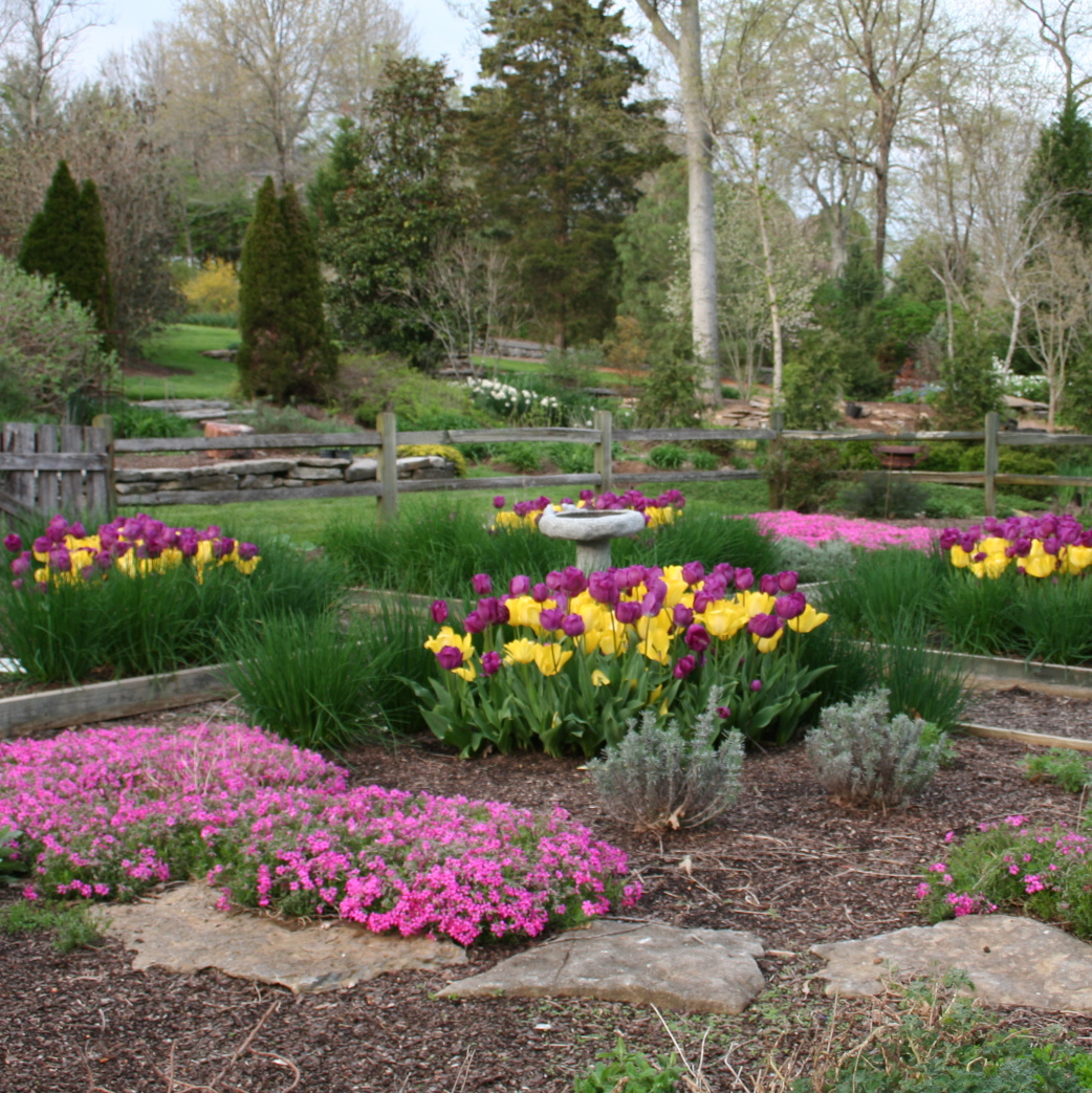 Spring Landscaping Tips garden design: garden design with planting tulip bulbs in spring