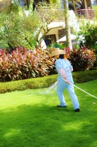 what time of day is best for watering your lawn