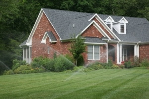four tips on watering lawn in a drought