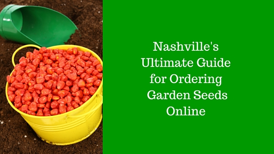2nasvhille's ultimate guide to buying seeds online