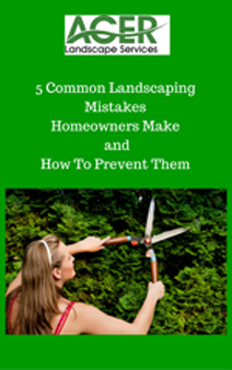 5-Common-Landscaping-Mistakes-Homeowners-Make_-andHow-To-Prevent-Them2