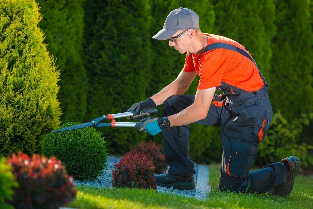 landscaping 101  four spring cleaning tips for your home u2019s garden