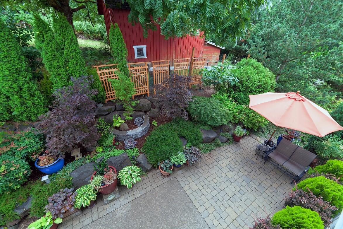 Designing Backyard Garden